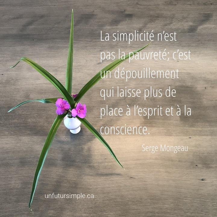 Bouquet de petites fleurs violettes avec grandes feuilles minces en plongée sur une table grise; citation de Serge Mongeau : La simplicité n'est pas la pauvreté; c'est un dépouillement qui laisse plus de place à l'esprit et à la conscience.