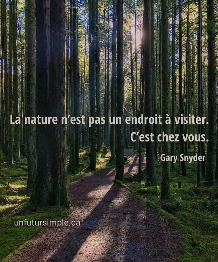 Piste ondulante dans une forêt éclairée par un soleil lointain avec citation de Gary Snyder : La nature n'est pas un endroit à visiter. C'est chez vous.