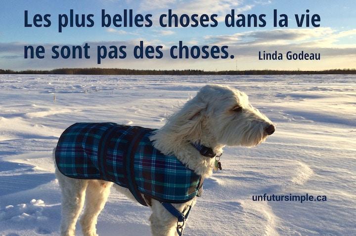 Chien blanc avec manteau bleu sur champ enneigé; citation de Linda Godeau : Les plus belles choses dans la vie ne sont pas des choses.