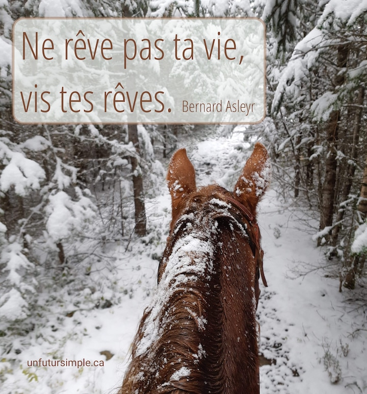 Citation de Bernard Asleyr: Ne rêve pas ta vie, vis tes rêves. Arrière-plan: Tête de cheval en plongée sur un chemin boisé enneigé.