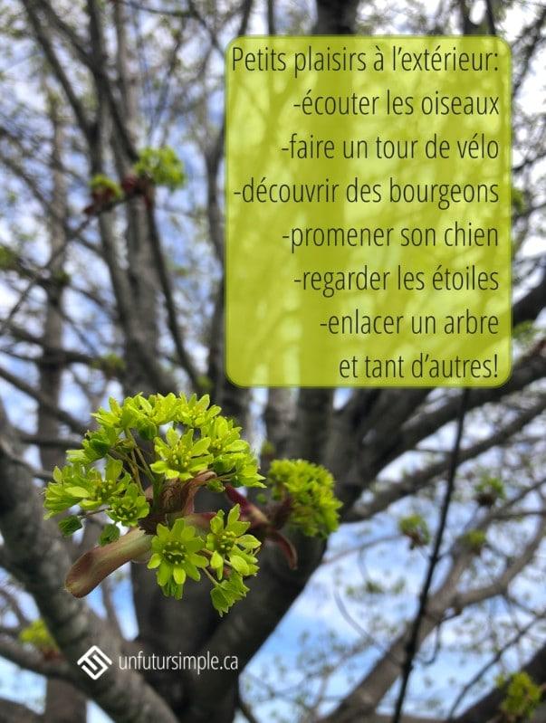 Citation : Petits plaisirs à l'extérieur : écouter les oiseaux, faire un tour de vélo, découvrir des bourgeons, promener son chien, regarder les étoiles, enlacer un arbre, et tant d'autres! Arrière-plan : bourgeon d'un érable