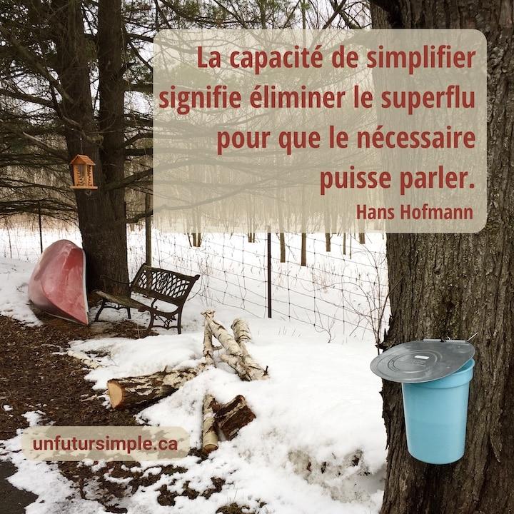 Citation de Hans Hoffman: La capacité de simplifier signifie éliminer le superflu pour que le nécessaire puisse parler. Arrière-plan: Seau avec couvercle sur érable avec un banc, un canot et une mangeoire à oiseux en arrière-plan sur un fond de neige.