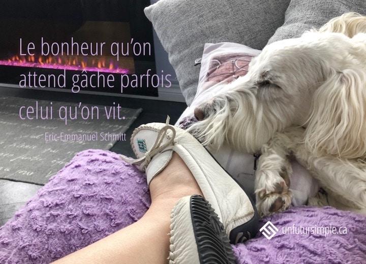 Citation de Éric Emmanuel Schmitt : Le bonheur qu'on attend gâche parfois celui qu'on vit. Arrière-plan: Mocassins sur un coussin violet près d'un chien blanc devant un foyer électrique rose.