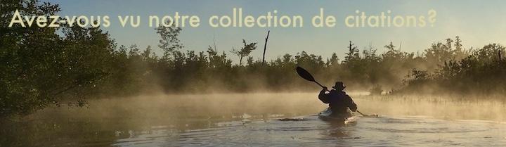 Homme en kayak tôt le matin. Texte: Avez-vous vu notre collection de citations?