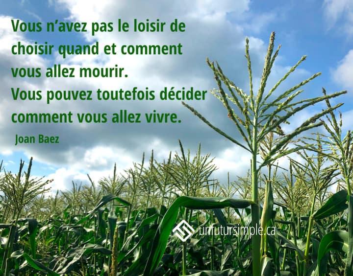 Citation de Joan Baez: Vous n'avez pas le loisir de choisir quand et comment vous allez mourir. Vous pouvez toutefois décider comment vous allez vivre. Têtes de maïs sur un ciel nuageux.
