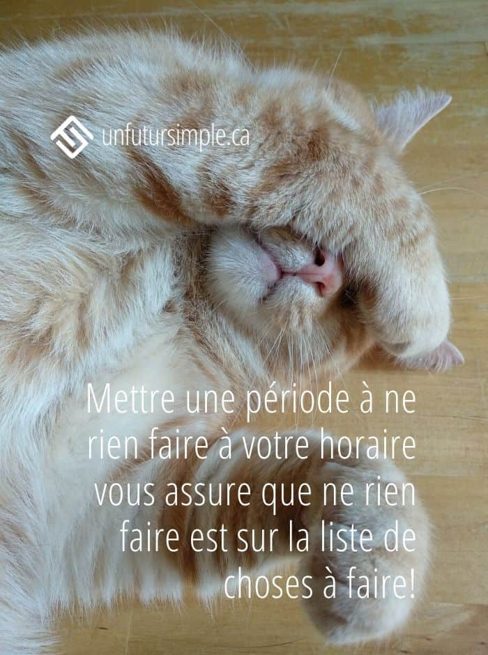 Citation: Mettre une période à ne rien faire à votre horaire vous assure que ne rien faire est sur la liste de choses à faire! Arrière-plan: chat roux avec patte au visage.