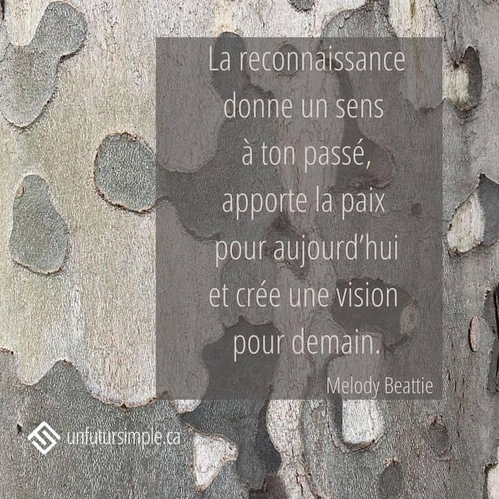 Citation de Melody Beattie : La reconnaissance donne un sens à ton passé, apporte la paix pour aujourd'hui et crée une vision pour demain. Gros plan de l'écorce d'un arbre à Madrid.