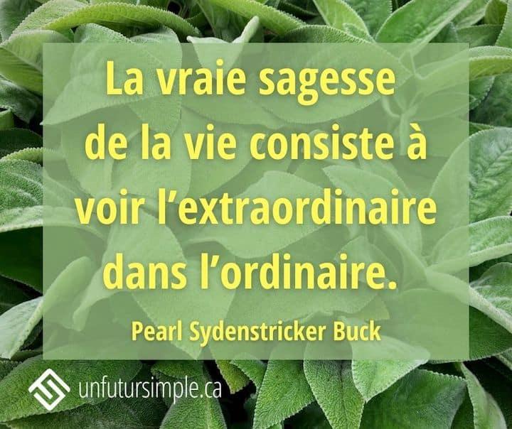 Citation de Pearl Sydenstricker Buck: La vraie sagesse de la vie consiste à voir l'extraordinaire dans l'ordinaire. Arrière-plan: plante verte.