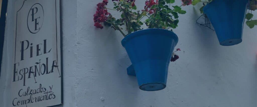 Deux pots à fleurs bleus sur un mur blanc à côté d'une affiche Piel Espanola.