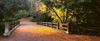 Sentier et pont à l'automne.