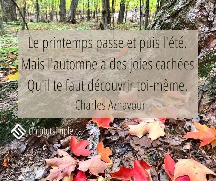 Citation de Charles Aznavour : Le printemps passe et puis l'été. Mais l'automne a des joies cachées Qu'il te faut découvrir toi-même. Arrière-plan: Feuilles d'érable rouges au pied d'un tronc sur une piste en forêt.