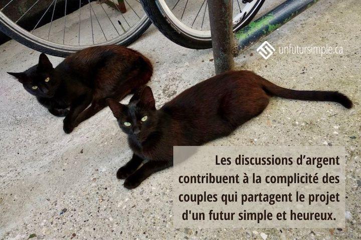 Citation relative à parler d'argent: Les discussions d'argent contribuent à la complicité des couples qui partagent le projet d'un futur simple et heureux. Arrière-plan: Deux chats noirs allongés sur un trottoir près de bicyclettes.