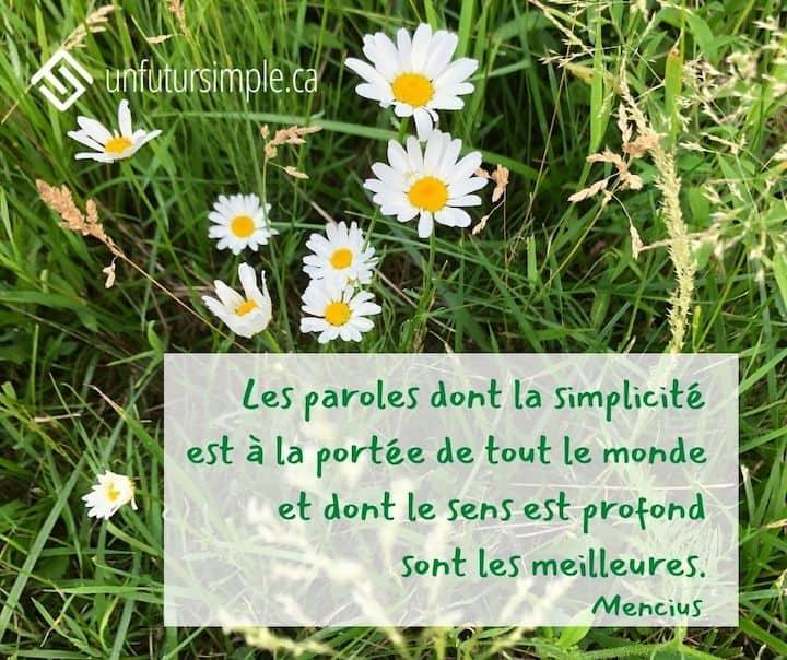 Citation de Mencius : Les paroles dont la simplicité est à la portée de tout le monde et dont le sens est profond sont les meilleurs. Marguerites blanches qui poussent dans de longues herbes vertes.