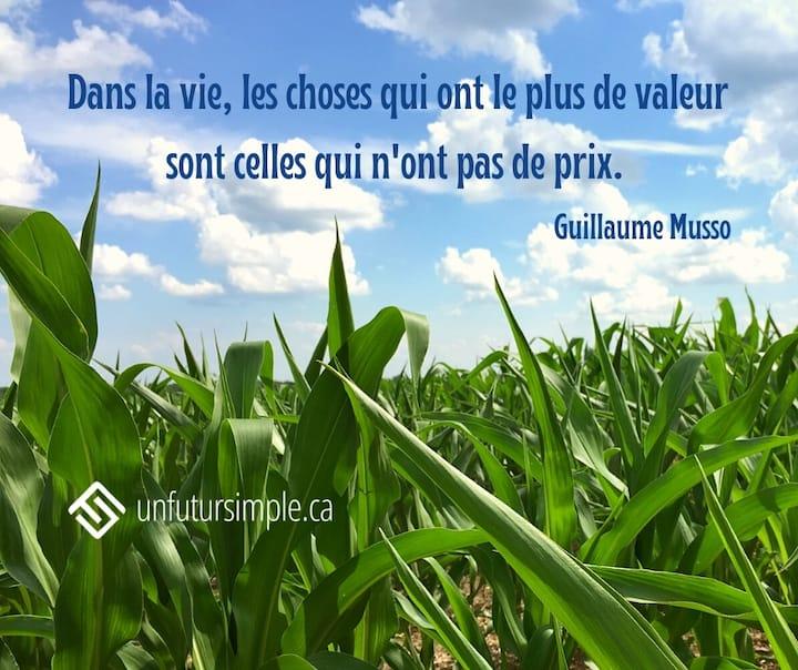 Citation de Guillaume Musso: Dans la vie, les choses qui ont le plus de valeur sont celles qui n'ont pas de prix. Champ de maïs avec feuilles en avant plan sur un ciel bleu avec nuages.
