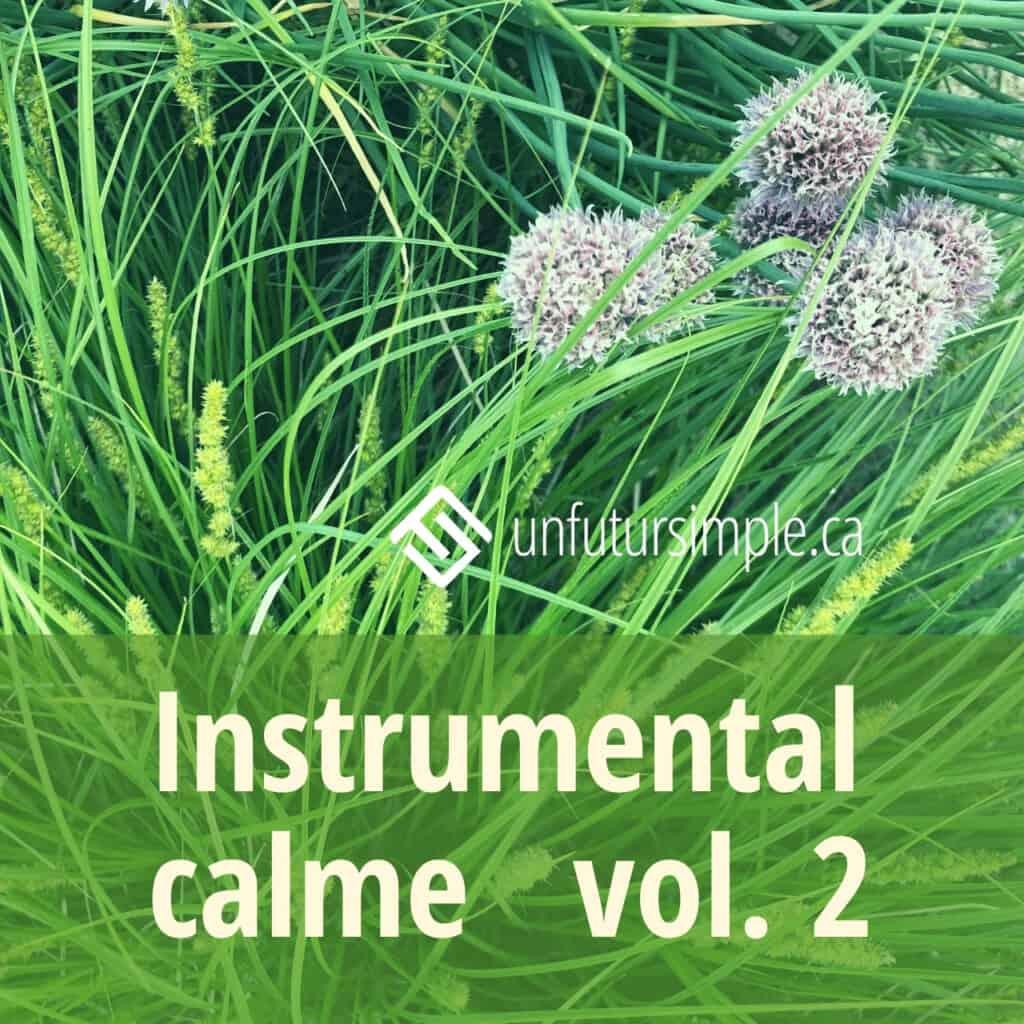 Une des listes d'écoute sur Spotify: Instrumental calme vol. 2 - arrière-plan: plantes